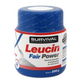 Survival Leucin Fair Power 250 g