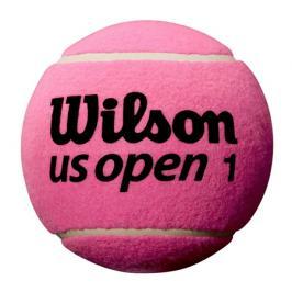 Tenisový míč Wilson US Open Mini Jumbo Ball Pink 5''