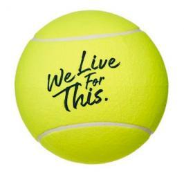 Tenisový míč Babolat Midsize Ball French Open