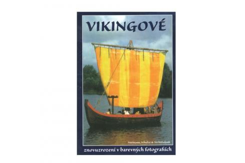 Vikingové dle vyobrazení Knihy